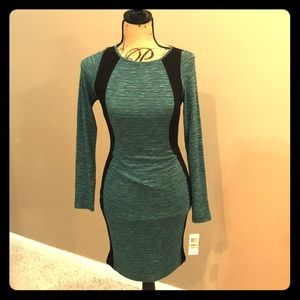 NWT fitted long sleeve dress. Size S